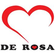 <p>De Rosa has been producing some of the finest examples of hand built frames from it's workshop in Milan since 1953. The Small company is proud of its ability to construct racing frames in all four frame materials: steel, titanium, aluminium and carbon and has over the years supplied numerous pros including the famous Eddy Merckx. Every De Rosa really is something very special and many cyclists spend their entire riding careers longing to own one.</p>